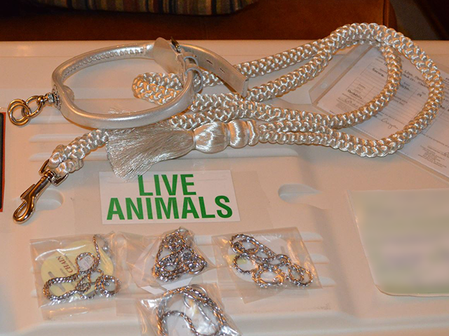 Complete silver set along with a few different sizes of show chain.
